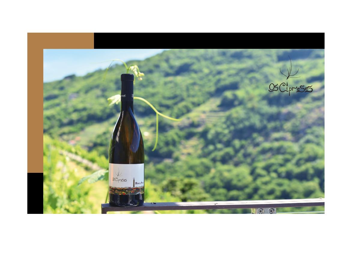 etiqueta-vino-os-cipreses